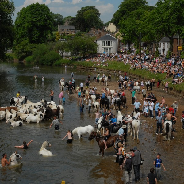 Appleby Fair River Eden