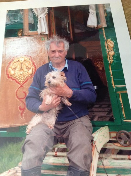 Jack Evans missing dog judy wagon