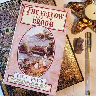 The Yellow on the Broom  front cover
