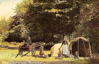 Gypsy camp in New Forest