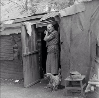 Woman in shed