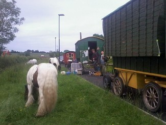 "Horse-drawn New Traveller ""reassured"" by anti-horse tethering campaigners – but concerns remain"