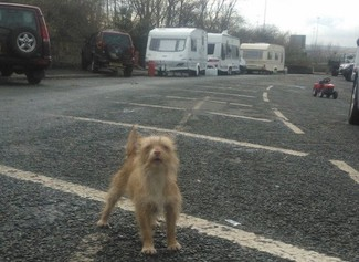 A 'negotiated stopping' Traveller site in Leeds