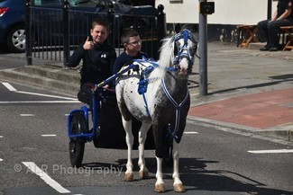 Stockton On Tees charity horse drive (c) ALR Photography